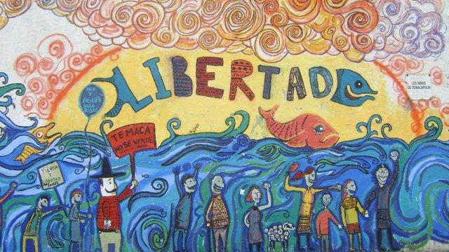 temaca, mural temaca, #temacanoestásolo, presa, jalisco,
