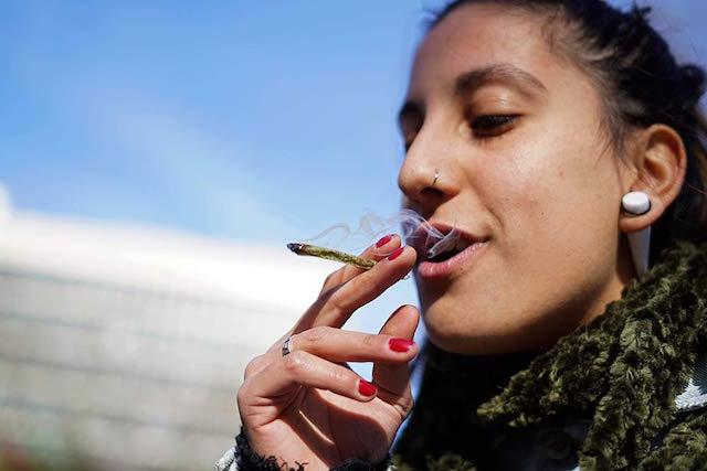 Marihuana legal Uruguay