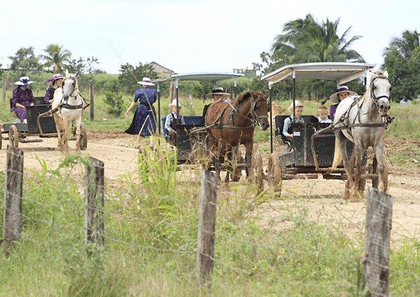 Multan a menonitas en QRoo por deforestación