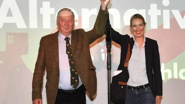 neonazis ultraderecha alemania AfD Merkel elecciones