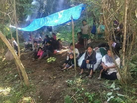 5 mil indígenas tzotziles desplazados en la selva en Chenalhó