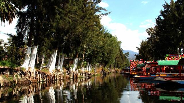 Juez obliga a CDMX a reparar daños ambientales de Xochimilco