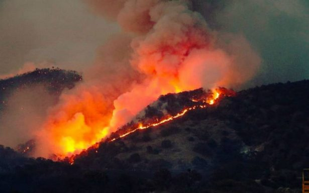Incendio Bosque Primavera Jalisco Zapopan Tala Guadalajara