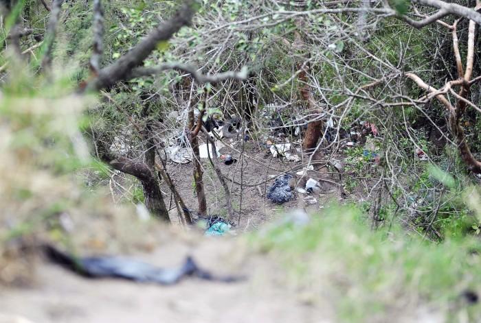 Javier Duarte supo de al menos 19 desapariciones forzadas, dice Yunes