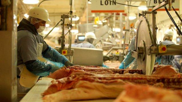 México importa carne cerdo Alemania por guerra comercial