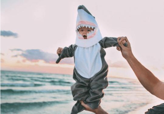 Se roban tiburón de acuario disfrazándolo de bebé