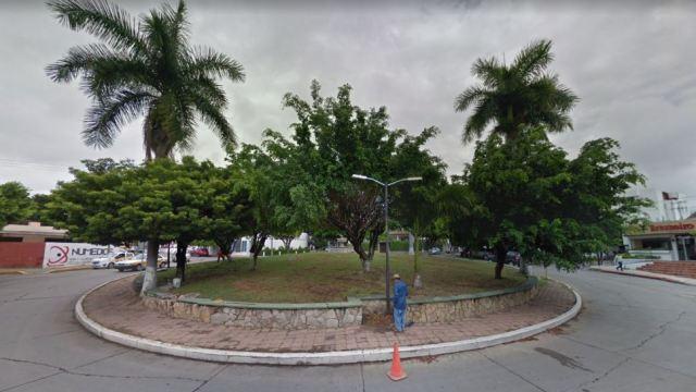 Secretario de Medio Ambiente de Tuxtla Gutiérrez derrumba árboles por feos