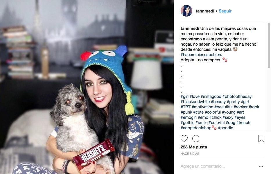 Hershey's e influencers: lo peor para los perritos