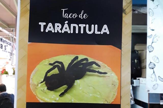 taco de tarántula