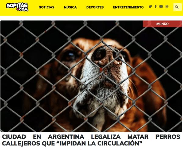 Sopitas también se subió a la nota falsa de los perros callejeros en Argentina