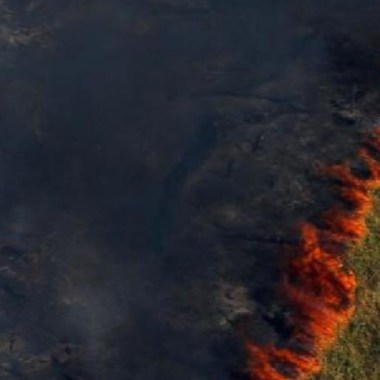 Impacto de los incendios en el Amazonas