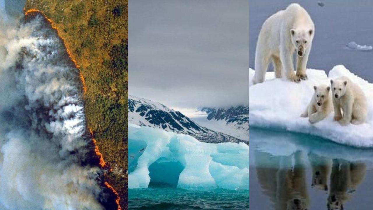 ¿Por qué hablar de cambio climático no es suficiente?