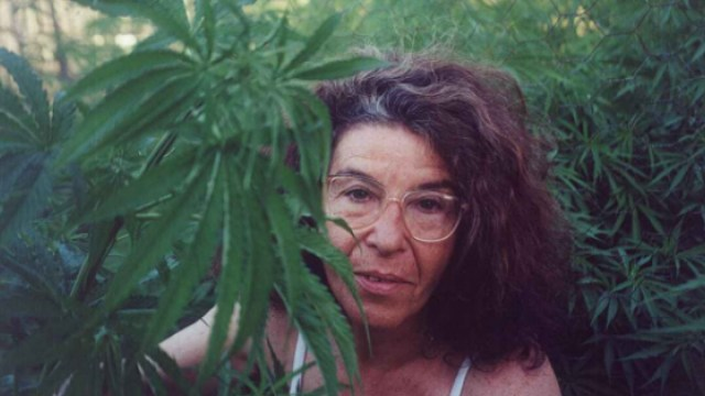 Abuela marihuana podría ir a la cárcel por cultivar cannabis