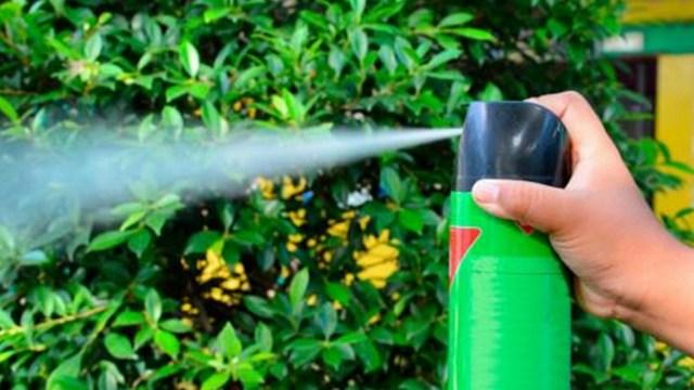 Países de Unión Europea quieren prohibir insecticidas