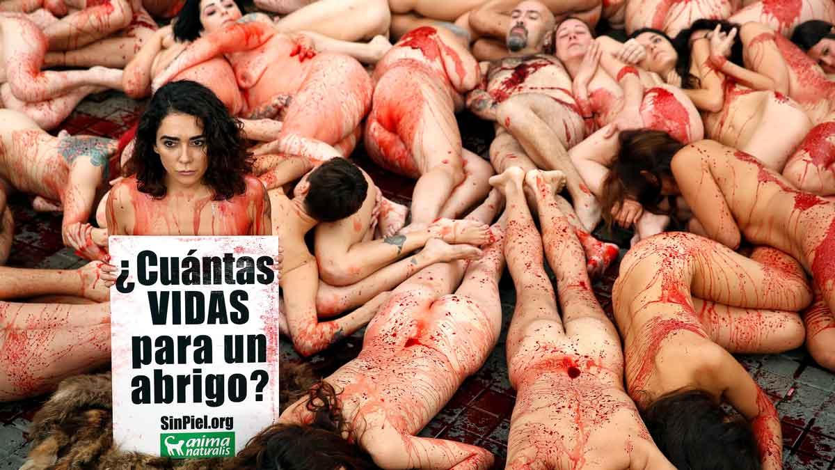 Activistas Se Desnudan Para Protestar Contra Uso De Pieles De Animales En España