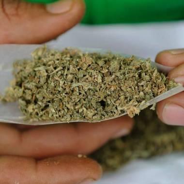 Marihuana podría mejorar la calidad del semen.