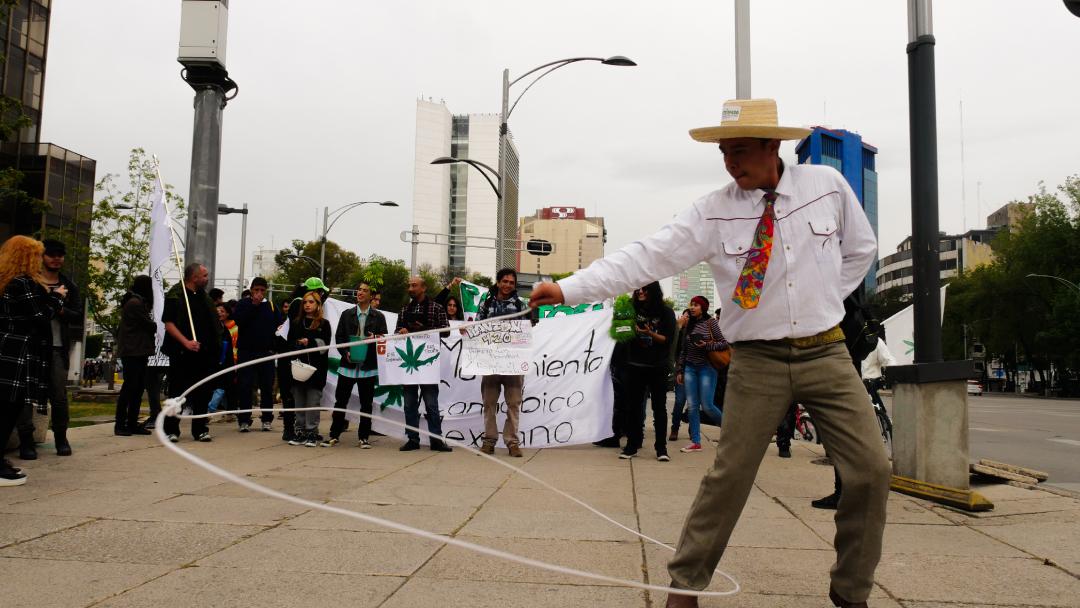 Cannabis, Mariguana, Mexico, Movimiento Cannabico Mexicano