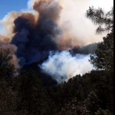 Incendio, Oaxaca, Sierra, Santa María Jaltianguis