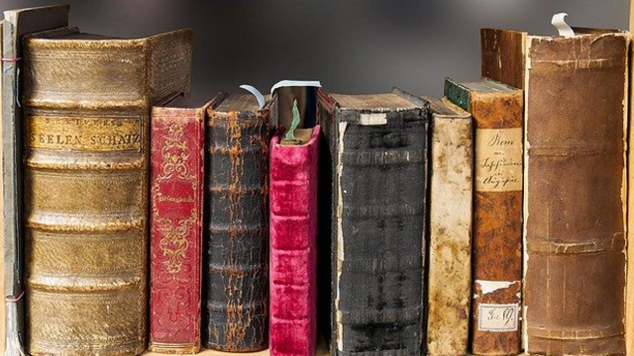 Mary Lynch, Día Internacional Del libro, Libro, Piel Humana