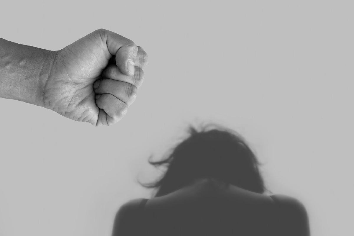 Mujeres, Victimas Violencia, Refugios, Recursos