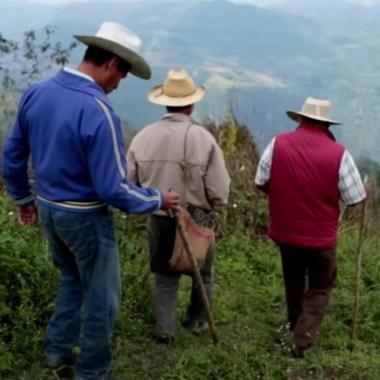 ley-minera-mineria-mexico-scjn-2020