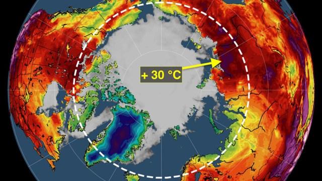 artico-ola-calor-temperatura-record-2020