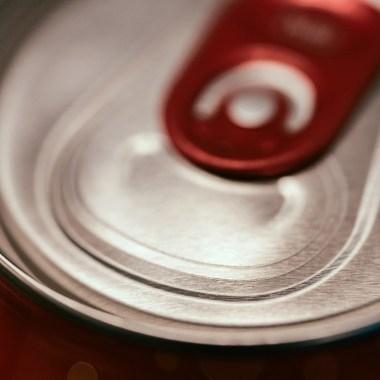 El 5 de agosto, iniciativa de prohibir refrescos y comida chatarra a los niños en Oaxaca se someterá a votación en el Congreso
