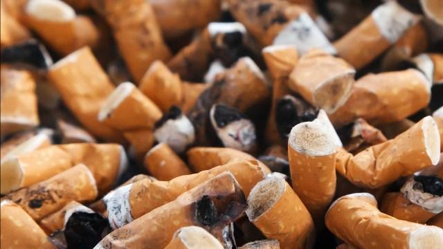 Morena y el Partido Verde quieren que fumar sea ilegal fumar en las playas para evitar que las especies marinas consuman las colillas del cigarro