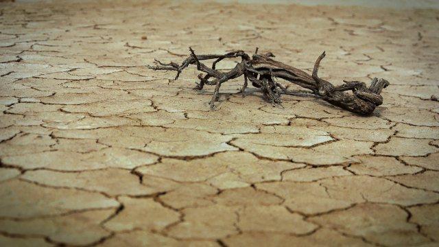 2020 años más calurosos historia OMM