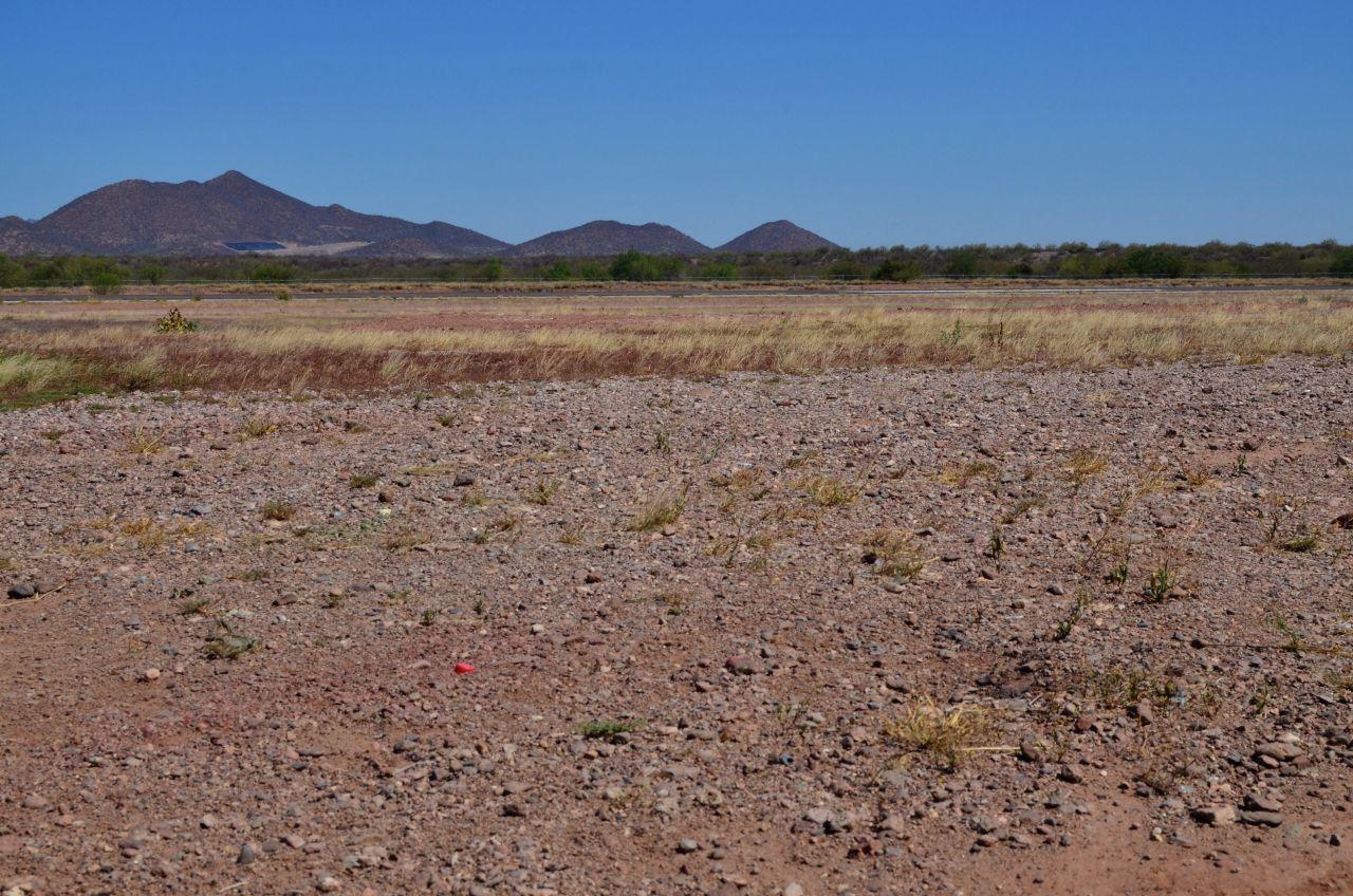 Paisaje desértico de Guaymas, Sonora