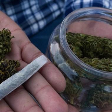 Estudio revela que extractos de cannabis reduce la posibilidad de contagiarse de Covid-19