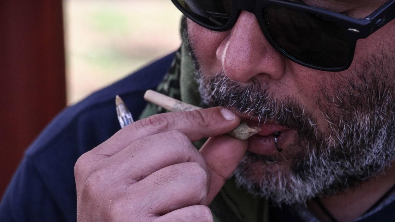 diputada arremete contra brownies de marihuana