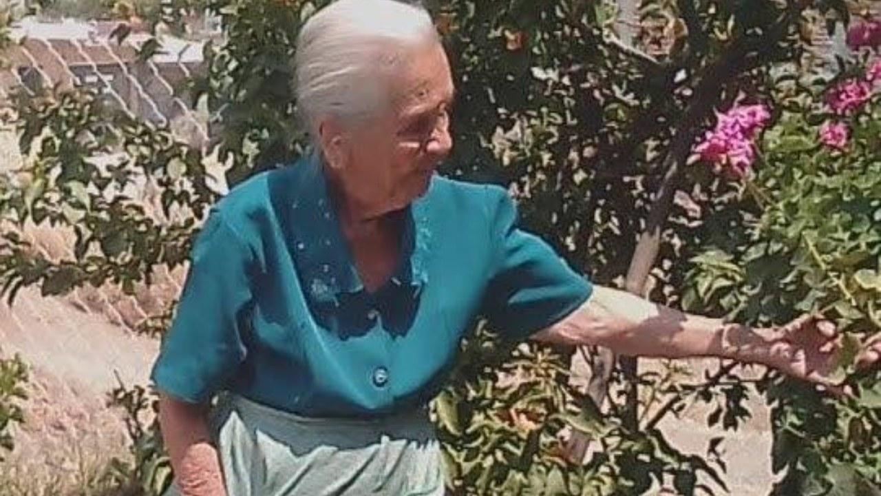 Doña Ninfa, youtuber de 83 años pide ayuda para hacerse viral y vivir de  sus videos - Plumas Atómicas