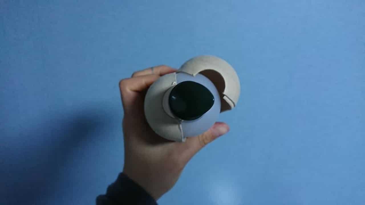 Botella ecológica Plástico Envuelta en papel