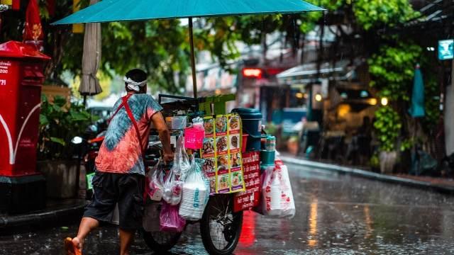 Vendedor ambulante México profesionista