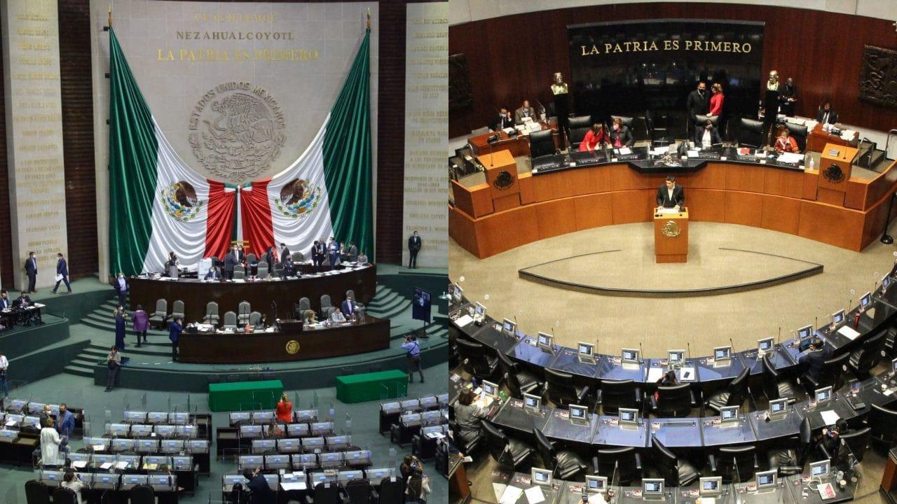Diferencias entre diputados y senadores