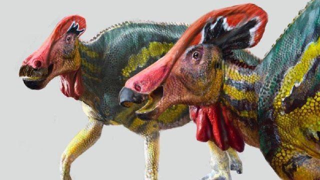 Hallaron nuevo dinosaurio en México