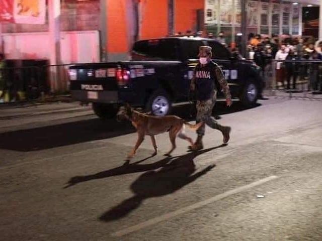 Evil Ecko Binomios Caninos Rescate Metro Línea 12
