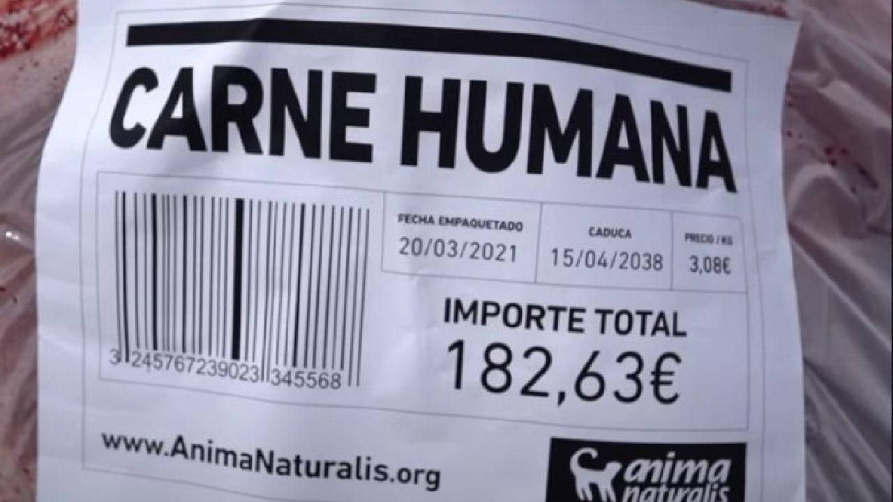 Video activistas desnudos se envasaron contra el consumo de carne en España