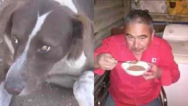 Cuchufleto espera a su amo Gonzalo Cruz