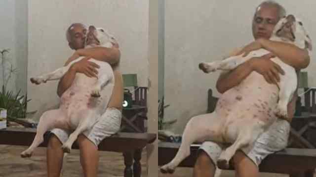 captan a dueño amoroso con su perro