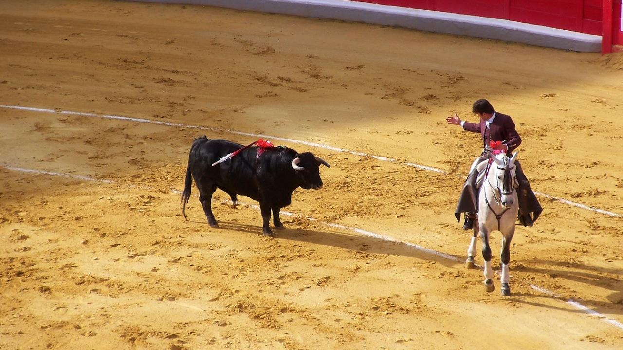 Gijón elimino las corridas de toros