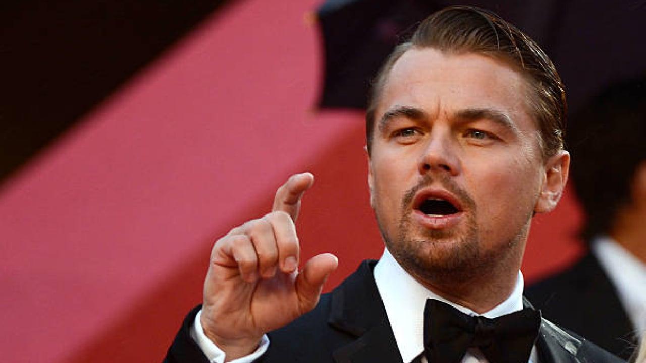 DiCaprio defendió ejemplares de vaquita marina
