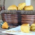 Pumpkin Dinner Rolls Day 4 #12DaysOf