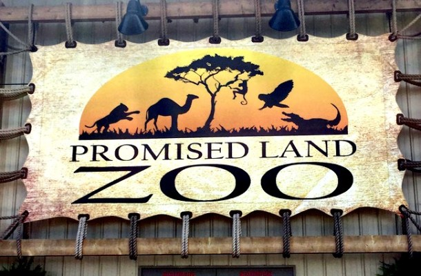 The Promised Land Zoo has much more than just animals. A regular admission includes a foot safari, bottle feedings, and the live animal show.