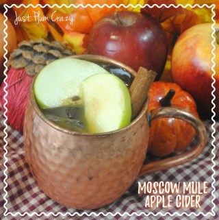 Moscow Mule Apple Cider Recipe