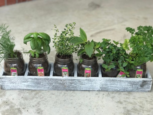 Indoor Window Herb Garden Diy indoor window herb garden just plum crazy if you are looking at possibly making an indoor herb garden then check out this workwithnaturefo