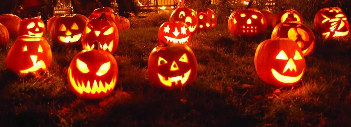 les citrouilles dhalloween sont surnommes les jack olantern