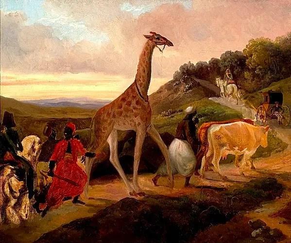 La traversée de la girafe, par Jacques Raymond Brascassat (1827, Musée des Beaux-Arts de Beaune)