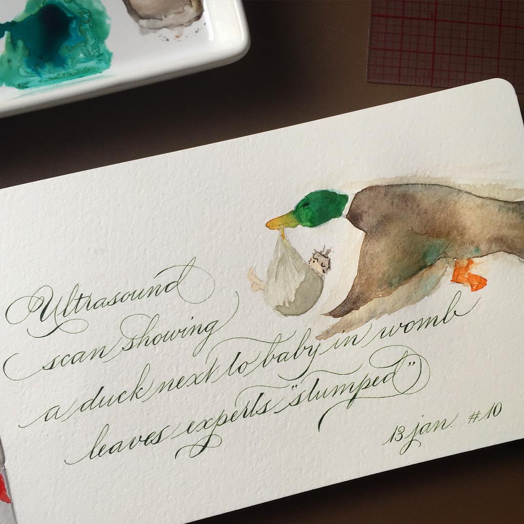 Calligraphie duck baby